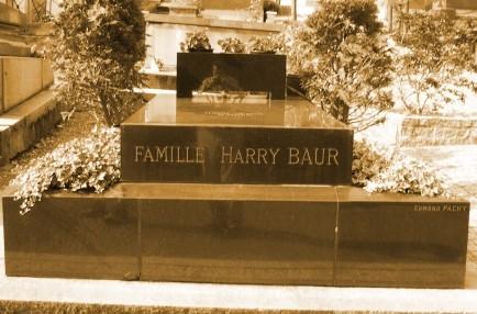 Famille HARRY BAUR