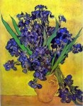 medium_mirbeau_les_iris_05_vincent.jpg