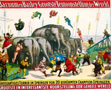 BARNUM les éléphants.jpg