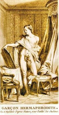 Hermaphrodite garçon gravure 3.jpg